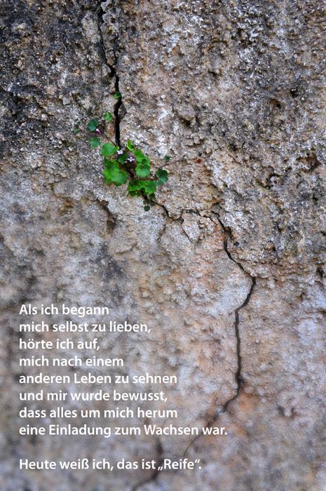 Gedicht über Reife